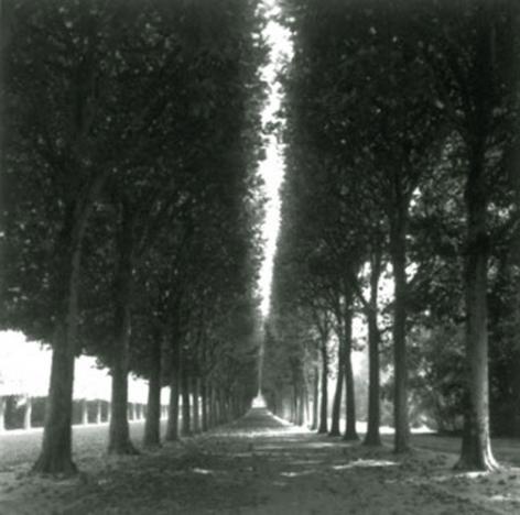 Versailles, France (4-99-3-2), 1999,19 x 19,28 x 28,or 38 x 38 incharchival pigment print