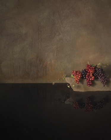 Drown, from the seriesFalling Bird, 2008,39 3/8 x 31 1/2 inch archival pigment print,