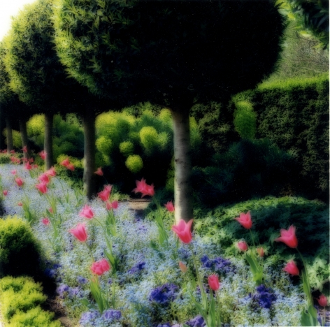 Parc de Sceaux, France (4-04-67c-7),2004,19 x 19,28 x 28,or 38 x 38 incharchival pigment print