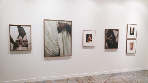 Curiosa Sector, Installation View.