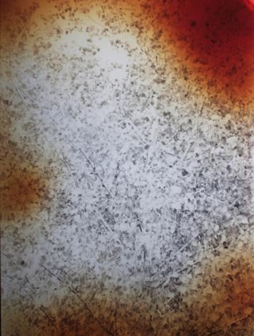 Cottonwood, 2011,40 x 30 inchuniquechromogenic print