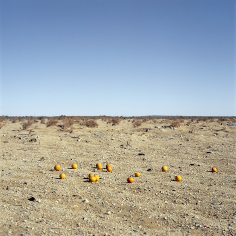 Discarded #9,2012. Archival pigment print. Image dimensions 40 x 40 inches, framedimensions 47 x 47 inches.