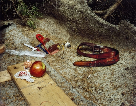 Landscapes for the Homeless #29, 1990, 62 x 75 inches,chromogenic print