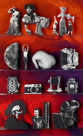 Camera (Library), 2013. Chromogenic print, 76 x 50 inches.