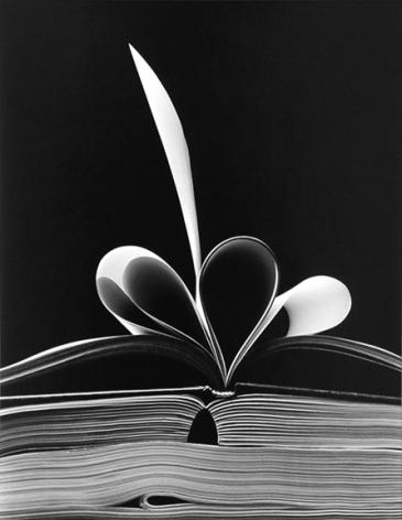 Chicago (88-4-213), 1988, 11 x 14 or 16 x 20 inch gelatin silver print