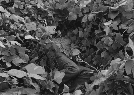 Reuben, Athens, GA (man in kudzu) 1995 Gelatin silver print, please inquire for available sizes