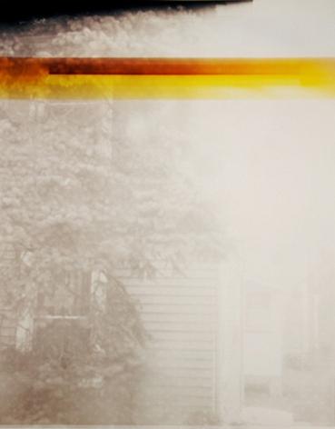Window, from the series Wildlife Analysis, 2010, 20 x 16 inch unique chromogenic print