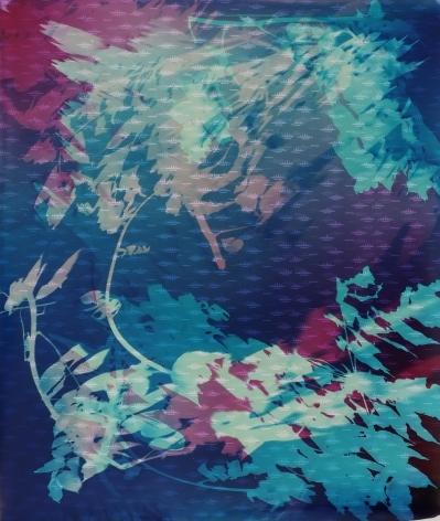 Field Recording (Swamp Submersion IV),2016, 50 x 41inch unique chromogenic print