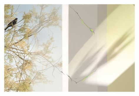 LS17_194, 2017. Archival pigment print with vellum and mixed media, 16 1/2 x 24 inches.