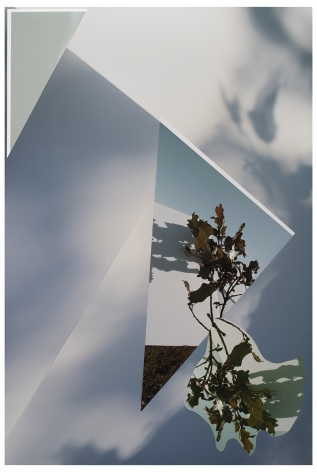 BE20_354,2020. Photo collage, 33 x 22 inches.