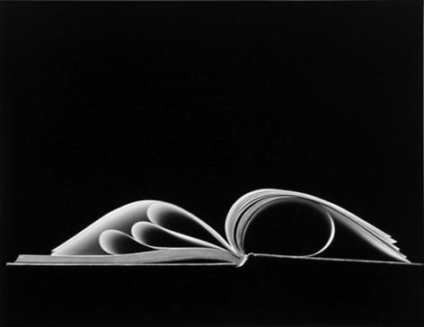 Chicago (88-4-214), 1988, 11 x 14 or 16 x 20 inchgelatin silver print