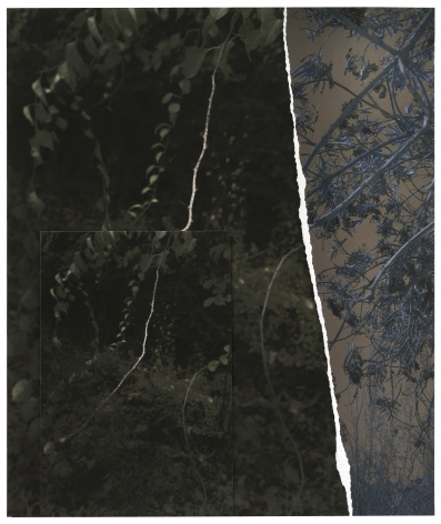 GD19_279,2019. Unique collaged archival pigment print, 18 x 15 inches.