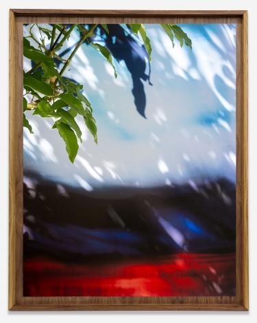 David Alekhuogie, Marathon, Mom's garden (33.988620, -118.331790) (34.126420, -117.537730), 2021. From the seriesTo Live and Die in LA.Archival pigment print, 48 x 38 inches.
