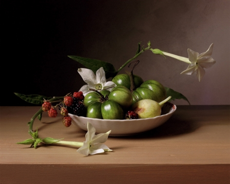 Early American, Still Life with Flowering Tobacco, 2009. Chromogenic print, 14 x 18 3/4 inches.