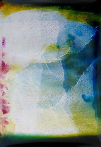 Lattice (Ambient) #122, 2014,48 x 30 inchunique chromogenic photogram