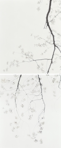 Hiroshima Sleepless Nights, Never Again 02 (Diptych), from the seriesChasing Good Fortune,2010, two prints each measuring 31 1/2 x 25 1/2 inches, overall 63 x 25 1/2 inch archival pigment prints