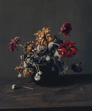 Photograph by Sharon Core titled 1863 from the series 1606-1907 of a floral still life arranged in the style of a classical painting