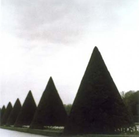 Parc de Jeurre, Etampes, France (4-99-45-12 #10), 1999,19 x 19,28 x 28,or 38 x 38 incharchival pigment print