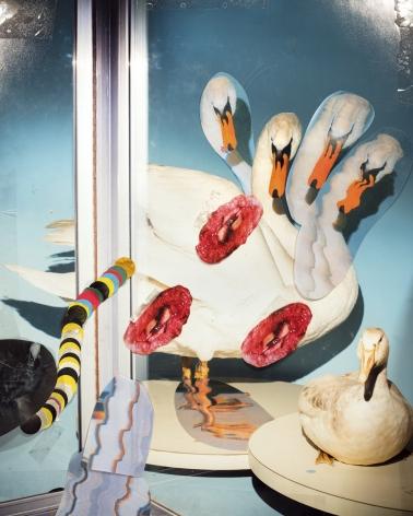 Brian Galderisi,Untitled, 2019. Archival pigment print, 34 x 37 1/2 inches.