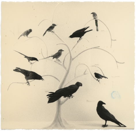 Untitled #165 (from the series Box of Ku), 1987, Gelatin silver print, Edition 23 of 40