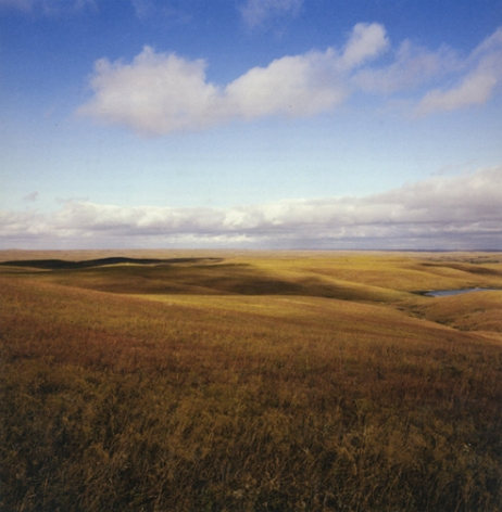 Bluestem grassland, Chase County, Kansas, October 31, 1979, 30 x 30 or 40 x 40 inch chromogenic print