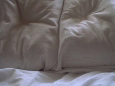 Constance DeJong, Pillow Talk 2