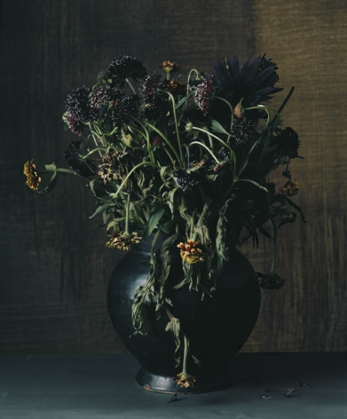 Photograph by Sharon Core titled 1865 from the series 1606-1907 of a floral still life arranged in the style of a classical painting
