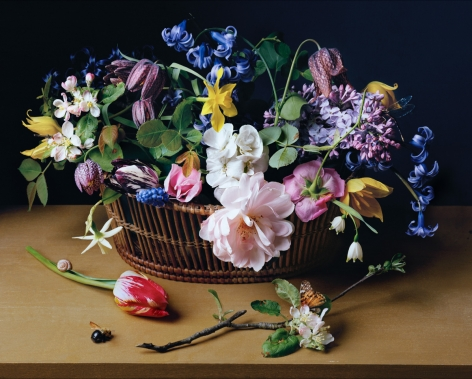 Photograph by Sharon Core titled 1614 from the series 1606-1907 of a floral still life arranged in the style of a classical painting