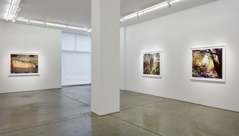 Anthony Hernandez, installation view.