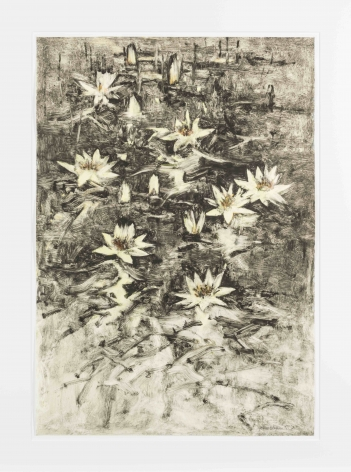John Alexander Light Yellow Lilies with Black Water, 2012 monotype from steel and aluminum plates with hand-coloring paper: 35 3/4 x 24 3/4 inches frame: 43 1/2 x 33 inches signed bottom right front (JoA-164)