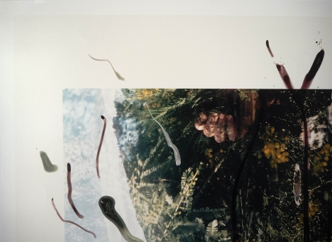 Rebecca Horn  Detail of Untitled, 2001  c-print of hand painted photograph  39 3/8 x 27 7/8 inches  Edition of 15  $5,000