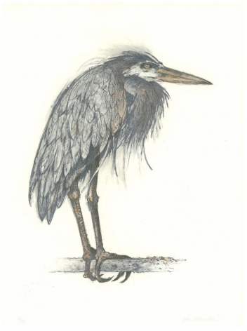 John Alexander Angry Heron, 2000 color lithograph 29 1/2 x 21 5/8 inches Edition of 35 signed bottom right front; numbered bottom left front
