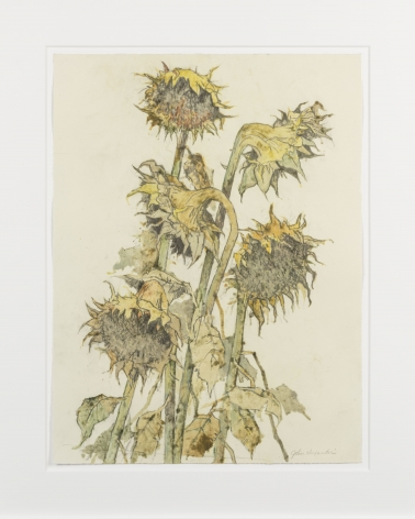 John Alexander Sunflowers, Light Autumn, 2012 monotype from steel and aluminum plates with hand-coloring paper: 23 x 17 3/4 inches frame: 31 x 25 1/4 inches (JoA-167)