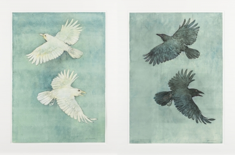 John Alexander Albino Crows and Crows in a Fog, 2012 pair of monotypes from steel and aluminum plates with hand-coloring paper: 36 x 25 1/2 inches frame: 43 x 32 inches both signed bottom right front (JoA-168)