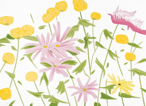 Alex Katz  Spring Flowers, 2017  color silkscreen on Saunders Waterford 425 gsm paper  40 x 55 inches  Edition of 60