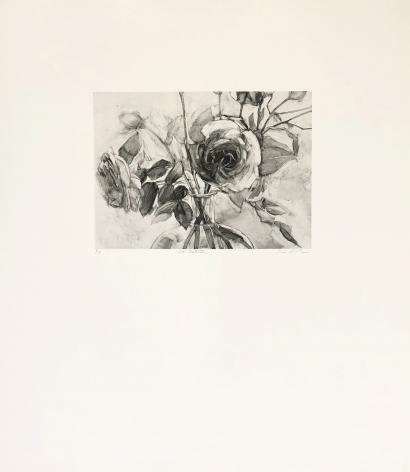 Karin Broker Dark Talk Portfolio, 2003   a suite of 8 Photogravures each 23 1/2 x 27 1/2 inches Edition of 12