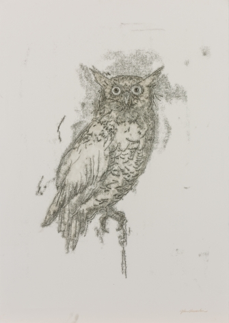 John Alexander Startled Owl, 2017 monotype on Fabriano Rosaspina paper 39 x 27 1/2 inches signed bottom right front (JoA-178)