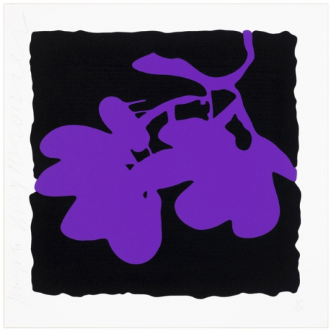 Donald Sultan  Lantern Flowers - Purple, 2012  portfolio of eight prints; color silkcreen with  enamel inks and flocking on 2-ply museum  board  24 x 24 inches  edition of 50  Publisher: Lococo Fine Art Publisher  $3,000