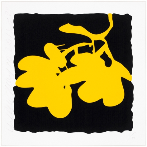 Donald Sultan  Lantern Flowers - Yellow, 2012  portfolio of eight prints; color silkcreen with  enamel inks and flocking on 2-ply museum  board  24 x 24 inches  edition of 50  Publisher: Lococo Fine Art Publisher  $3,000