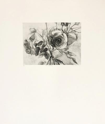 Karin Broker Sad Detente (From Dark Talk Portfolio), 2003 photogravure 26 1/4 x 22 1/4 inches Edition 3 of 12 (KB-123)