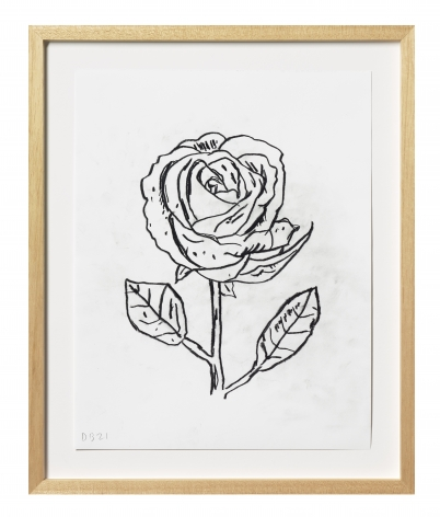 Donald Baechler Flower, 2021 graphite on Strathmore Archival Bond paper paper: 14 x 11 inches frame: 17 5/16 x 14 1/4 inches