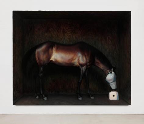 TM Davy horse (xox)