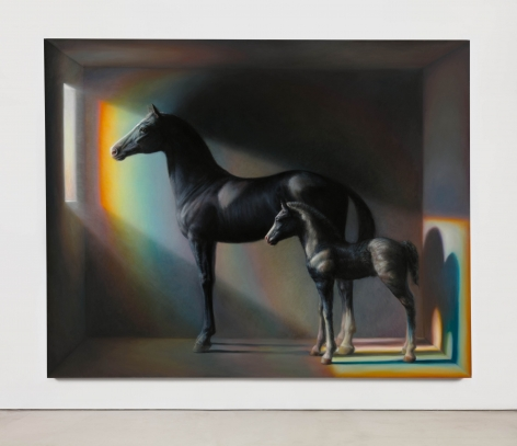 TM Davy, Horses (xo)