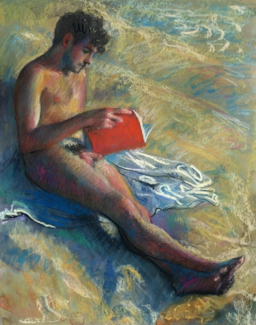 a man reading nude on the beach