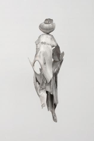 Broken Skull, Shell [alternate view], 2019