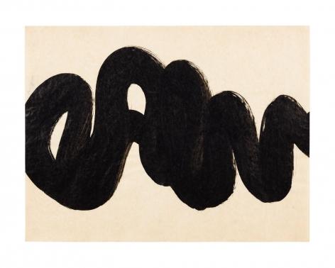 organic abstract drawing
