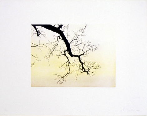 Untitled, 2005 Etching and aquatint