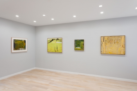 Installation view of landscape paintings by Tom Fairs