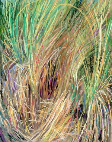a drawing of grass