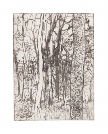 graphite drawing of a landscape with trees
